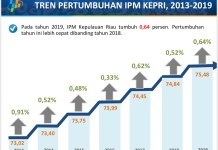 Pencapaian Terbaru Provinsi Kepulauan Riau (Kepri) Dalam Laporan Badan Pusat Statistik (BPS).