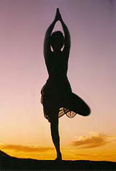 asanas  surya yoga
