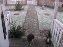 Inte så mycket snö den här julen...