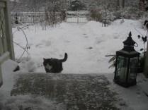 Det var snöigt...