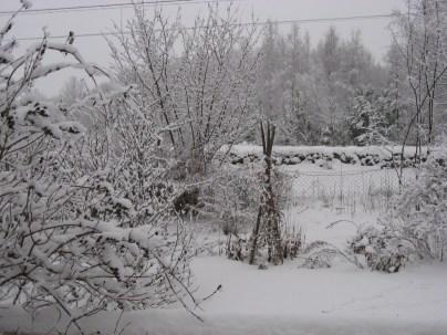 Snöiga julen 2009