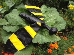 Bee-Cabbage