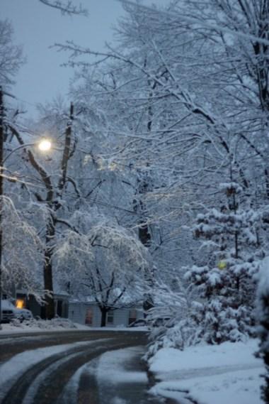 Snowy February Weekend 5