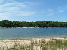 Lake Mi shore