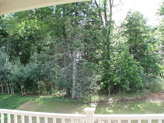 View of back yard from your covered deck.