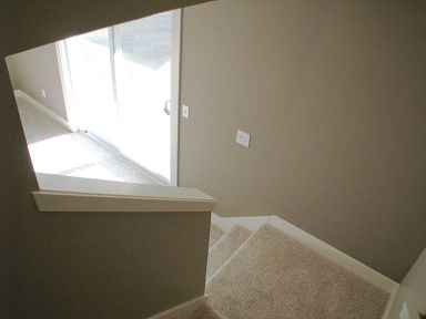 2447 Nuttall Court-Carpeted stairway to lower level family room-Slider to backyard patio