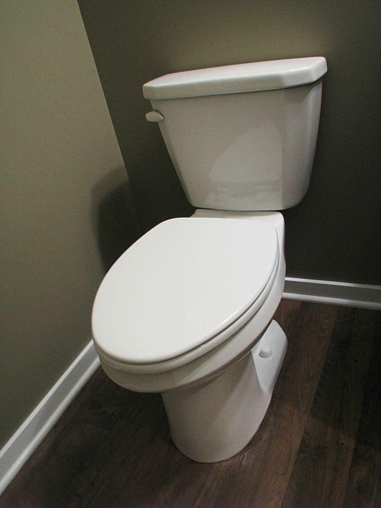 Elongated toilet in half bath.