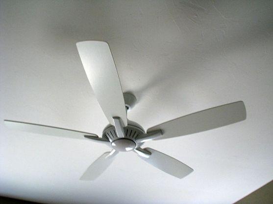 2506 Master bedroom ceiling fan
