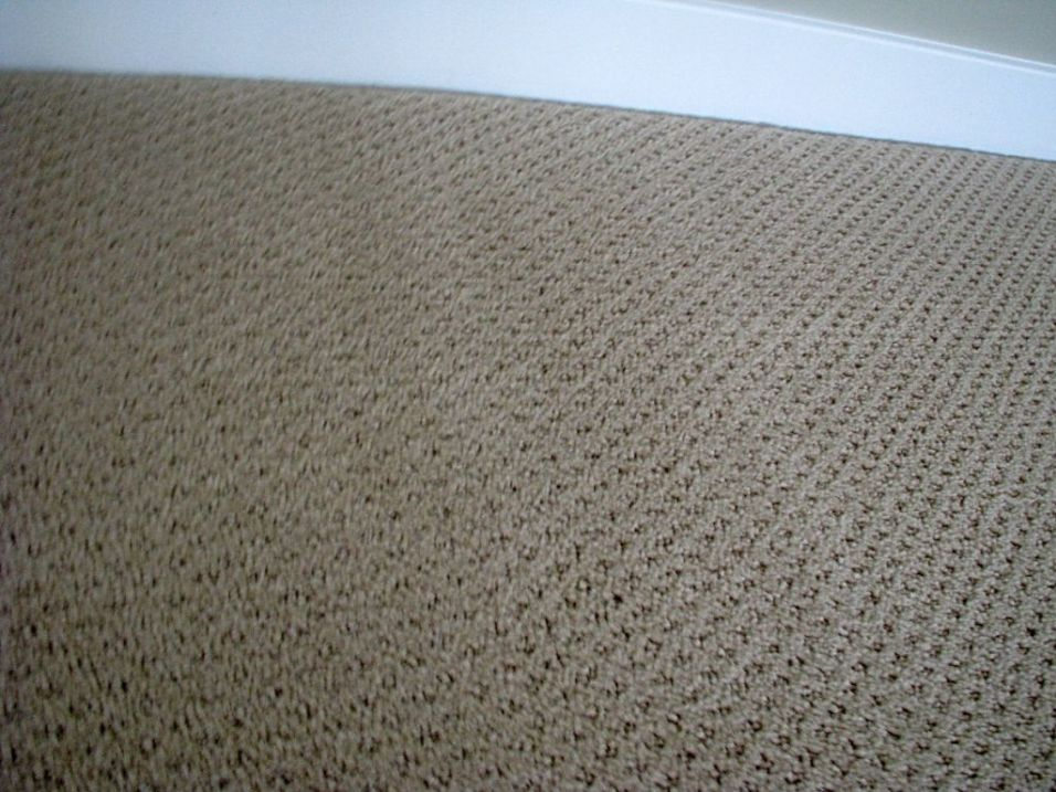 Lower level bedroom carpet