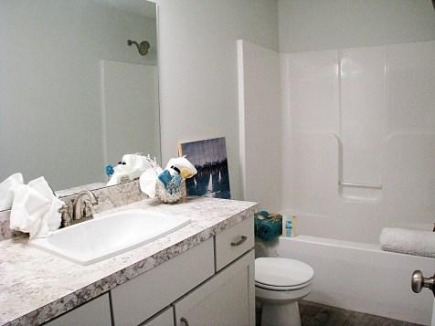 50-LL Full bath one peice tub shower combo.