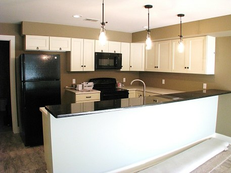 Cabinets lower level kitchen with raised bar