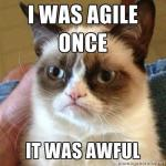 Agile Knitting