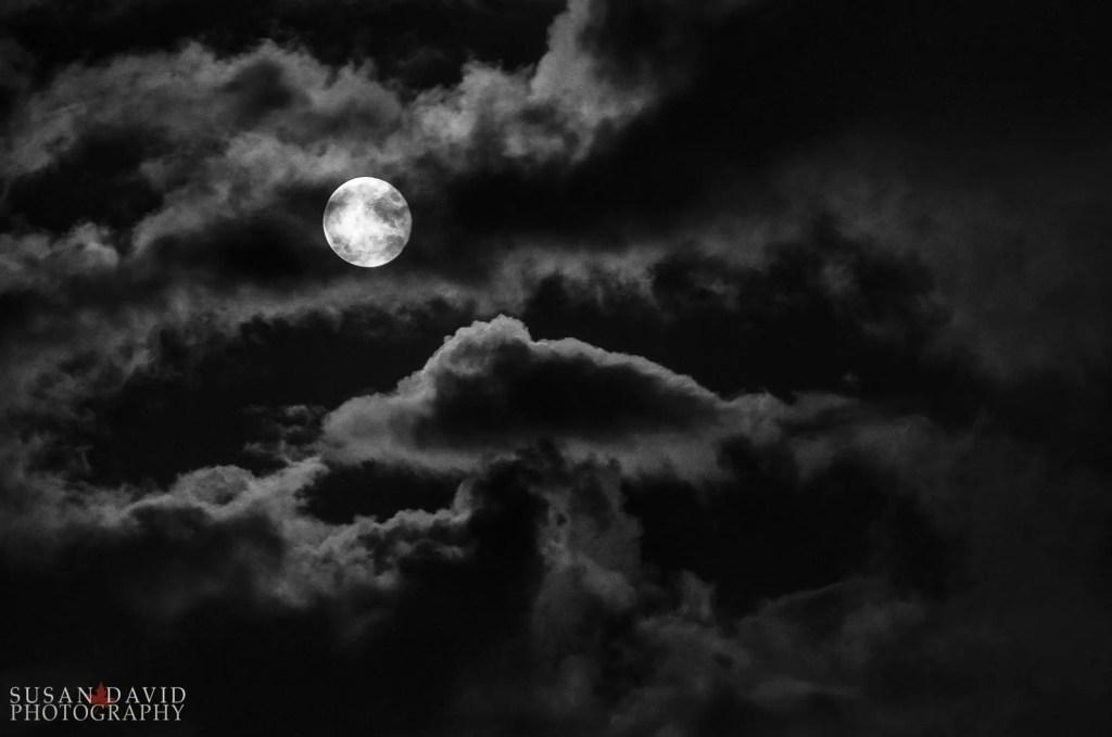 Super-Harvest-Moon-Edit.jpg