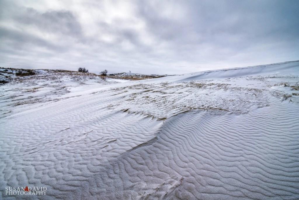 Cold Sandhill Dunes