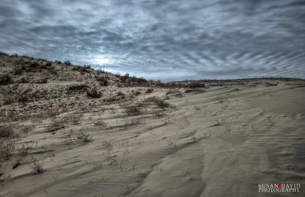 Great Sandhill Dunes