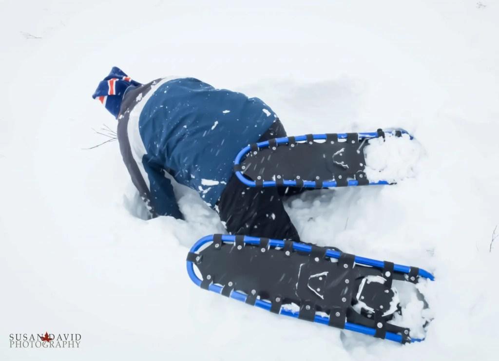 Snowshoe Problems
