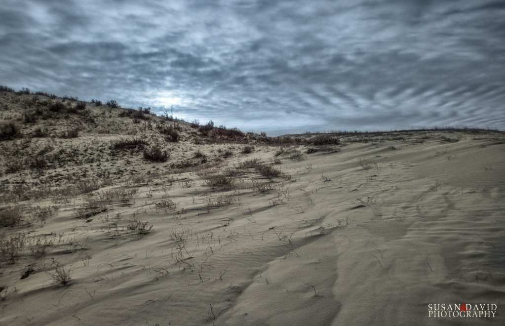 Great-Sandhill-Dunes.jpg