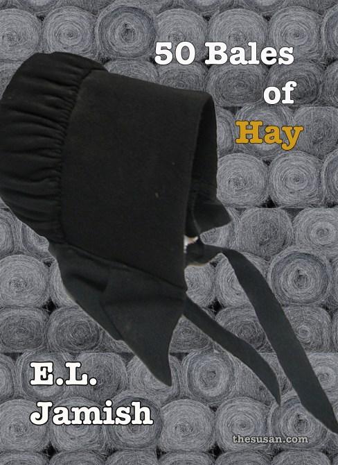 HayBook