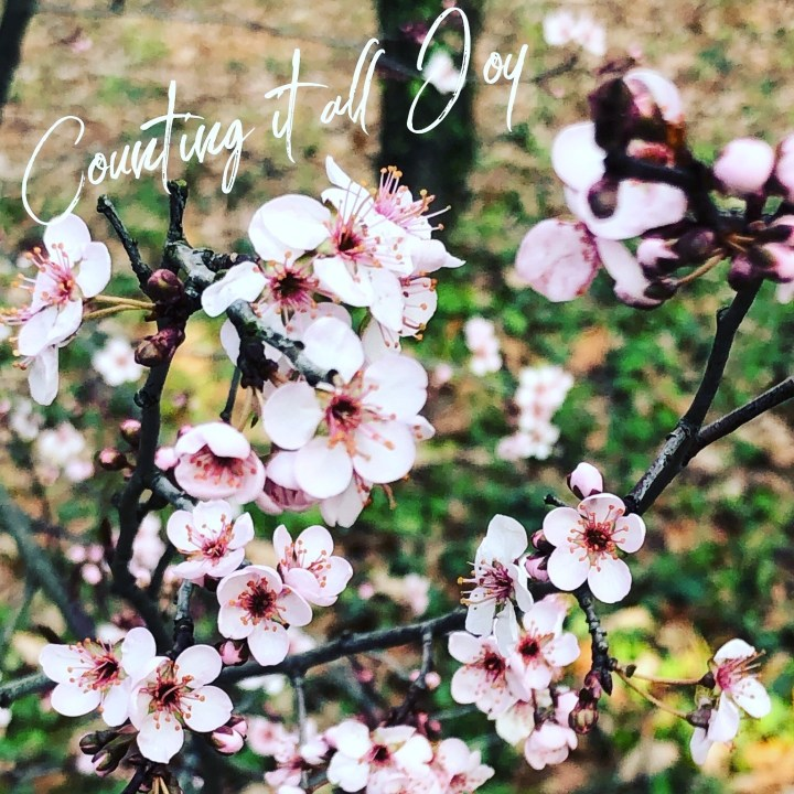 Spring is a time of new beginnings
