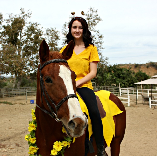 Horse halloween costume ideas saddle seeks horse all you need is yellow and brown felt and some faux flowers with a yellow shirt the horse has a fake monarch butterfly attached to her tail which was a solutioingenieria Image collections