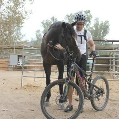 horse husband and mountain bike