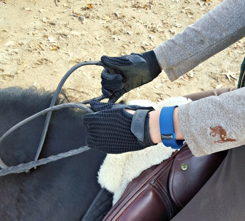 horseback riding fitbit