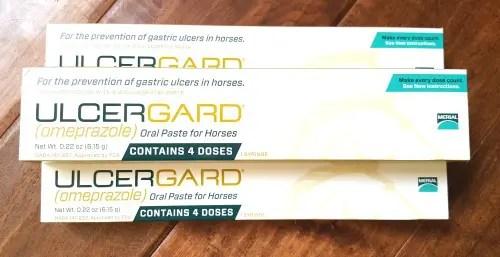 equine ulcer prevention saddleseekshorse.com