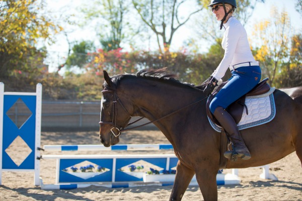 Bay horse with rider wearing SmartPak Piper Midrise Breeches