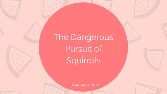 The Dangerous Pursuit of Squirrels and Other Temptations