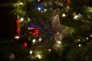 SGP_8646 Susan Guy_Calke Christmas w