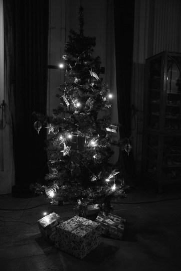 SGP_8760 Susan Guy_Calke Christmas BW w