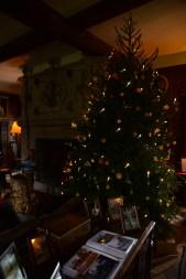 SGP_9072 Susan Guy_Baddesley Christmas w