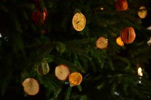 SGP_9083 Susan Guy_Baddesley Christmas w