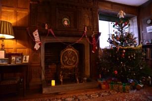 SGP_9180 Susan Guy_Baddesley Christmas w