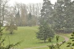 Susan Guy_Calke Abbey_Snow_House_04.03.16_14 w