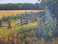 "Split Rail Fence near Benmiller, acrylic on texturized canvas, 22"" x 28"""