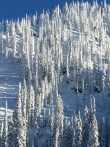 2016-december-13-kootenay-pass-3