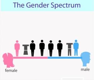 Genderqieer