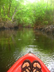 Kayaken in Nariva swamp