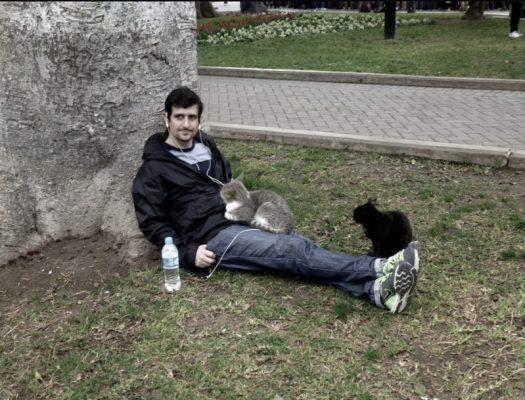 Cats, Parque Kennedy, Lima Peru
