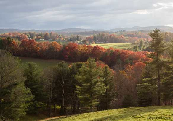 Autumn Turns Orange, in Carroll County Virginia