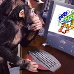 Monkey solves problems