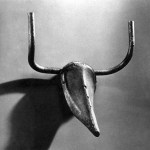 Bull Head from Bicycle Seat and Handle Bars