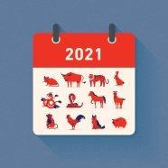 Reader's Digest Interview Ox Year 2021