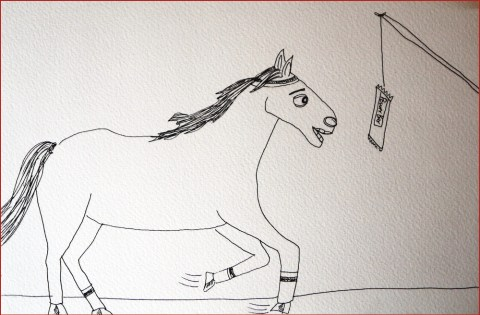horse1000
