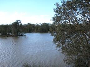 Berrinba-wetlands,-waters-flowing