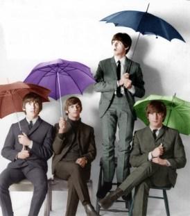 rain-beatles