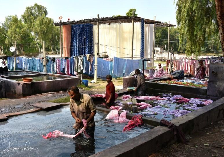 7.Dye and wash Sanganeer