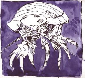 Tiefseekrabbe - Zeichnung von Susanne Haun - 22 x 23 cm - Tusche auf Bütten