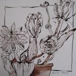 Eine besonders vielsagende Blume - Zeichnung von Susanne Haun - 25 x 25 cm - Tusche auf Aquarellpapier